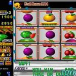 Fruit Bonus 2004